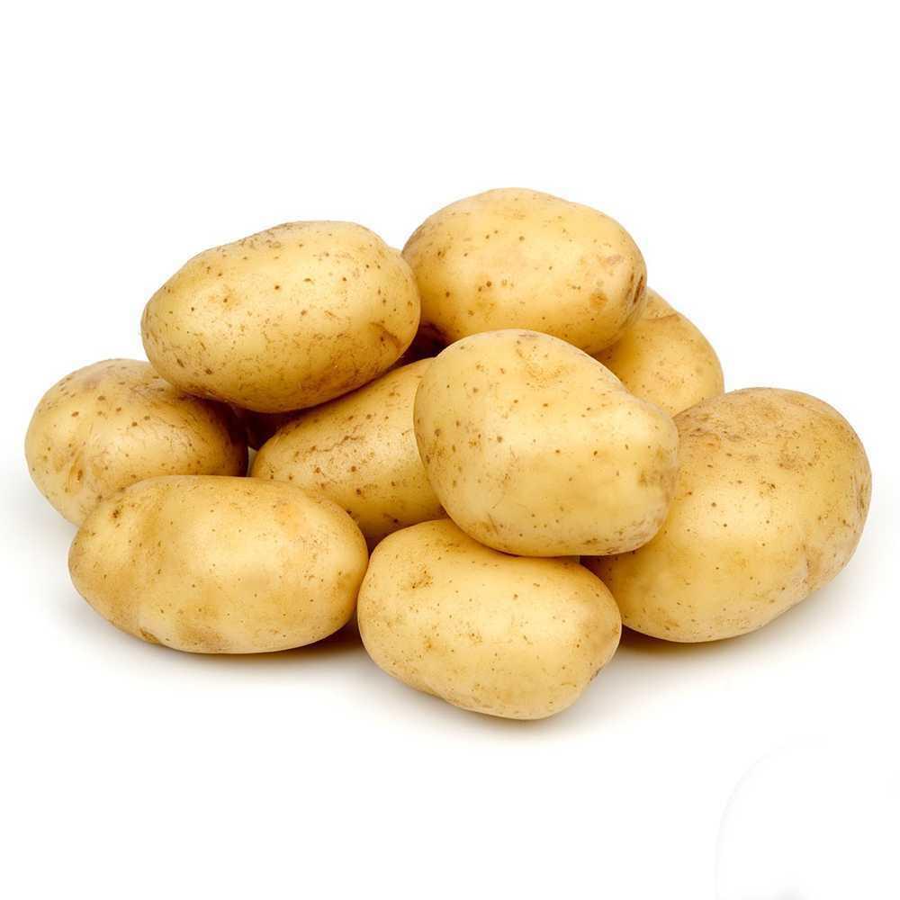 Big Potato (Net Weight ± 50 gm) 1 kg