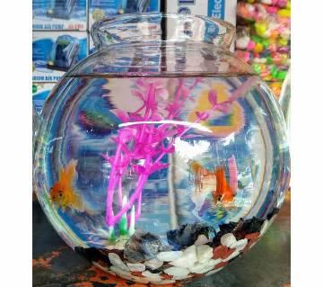 Aquarium for table or office desk