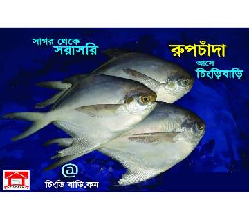 Rupchanda Fish From Bay Of Bengal 1 kg