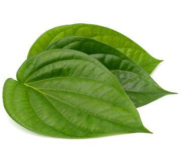 Betel Leaf (Pan)  0.5 bira