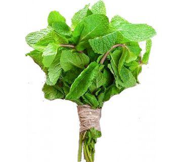 Mint Leaves ( Pudina Pata )  1 bundle