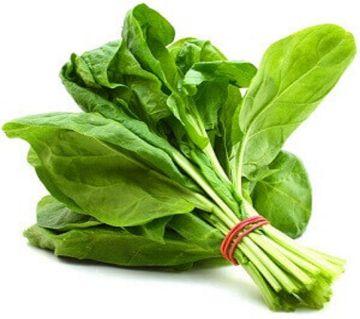 Palong Spinach (1-bundle)