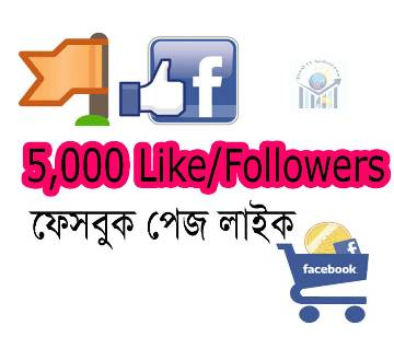 5000 (5k) Facebook Page Like/followers Promote Page