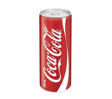 Coca Cola 250 ml can-(5% VAT Included on Price)-2300253