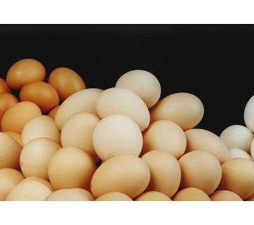 Chicken Eggs (Layer) - 30 Pcs