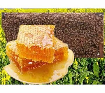 Honey (Mustard), 500 Gram-BD10