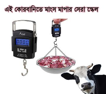 portable electronic scale-50kg