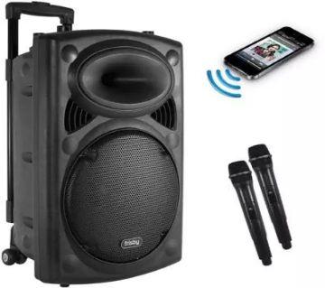 Rechargeable bluetooth karaoke speaker with wireless microphone