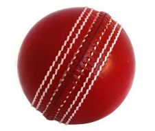 Samse Cricket Ball