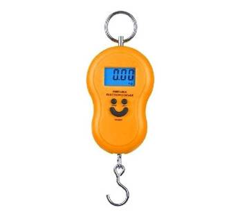 Portable electric weight scale
