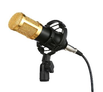 Condenser 100 Microphone