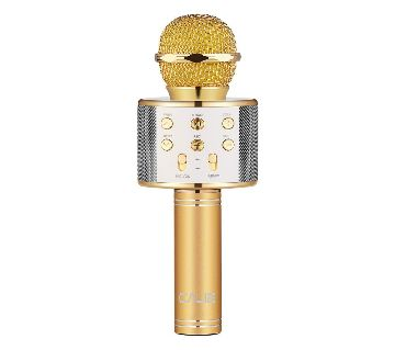 WS-858 Bluetooth Wireless Karaoke Handheld Microphone USB KTV Player Bluetooth Mic Speaker Record Music