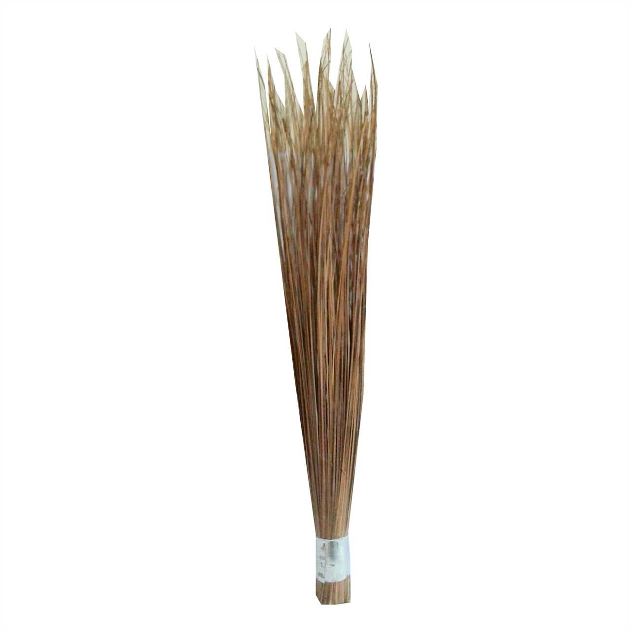 "Big Broom 31"" (Shola) 1 pcs"